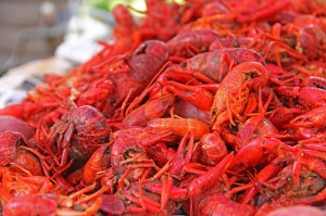 crawfish-169694_1280